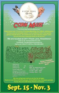 Corn Maze at Every Soul Acres